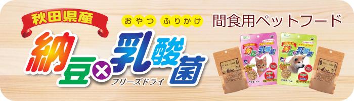 納豆☓乳酸菌ページ