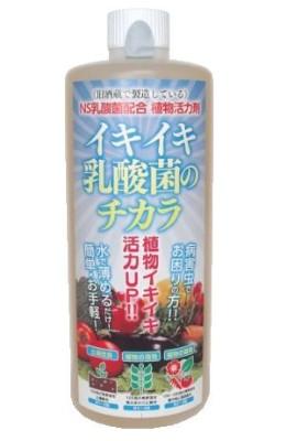 イキイキ乳酸菌のチカラ 実物
